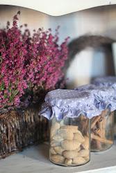 fiolety na jesień