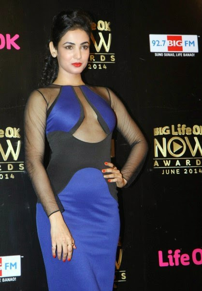 Sonal Chauhan at Life OK Now Awards