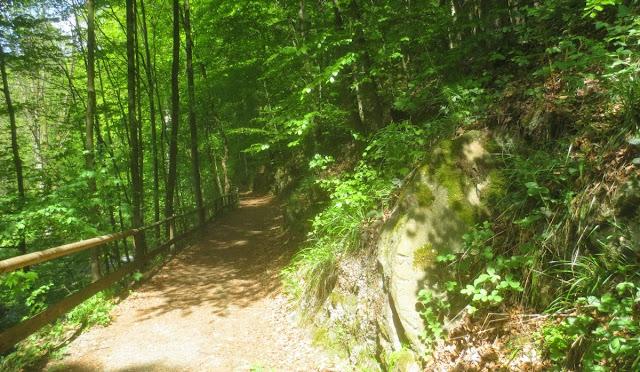 Bad Berneck: Spaziergang im Kurpark - Waldweg