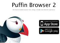 Puffin Browser Flash