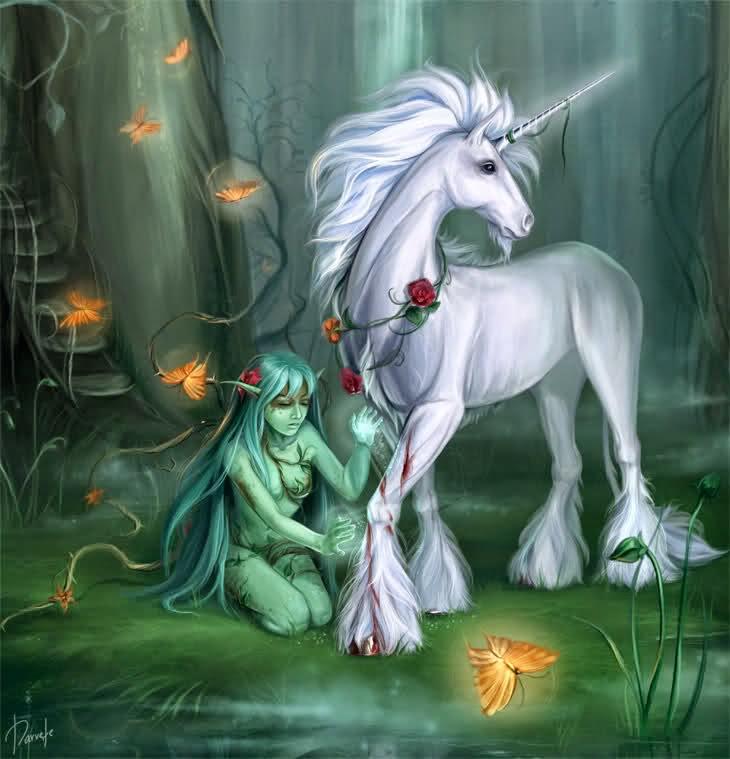 Il Rifugio Degli Elfi Regno Magico In Vendita