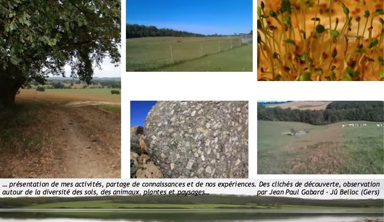 vie et santé du sol