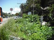 Horta de Rua