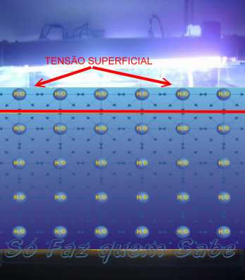 Moléculas da água se atraindo e formando a tensão superficial.
