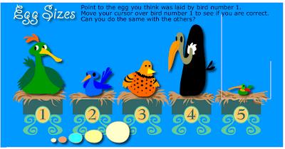 external image meddy_egg_size.png