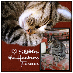 Skittles the Huntress