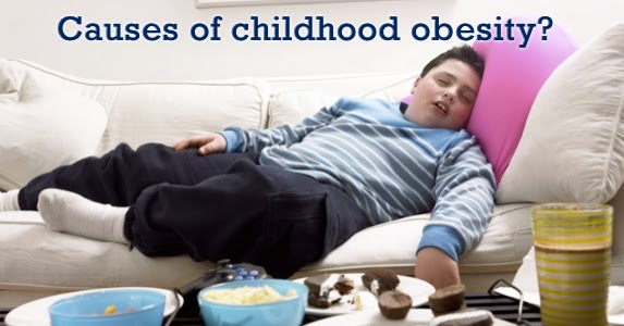 1 cause of children obesity marketing Advertising and childhood obesity:  children for obesity-related illnesses on the rise,  1 the facts on junk food marketing and kids,.
