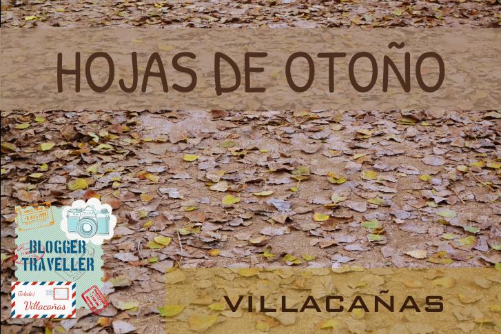 Hojas de Otoño en Villacañas