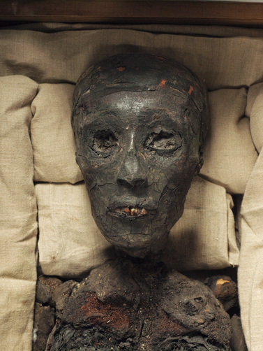 [Image: Head-of-the-mummy-of-King-Tutankhamun-photo.jpeg]