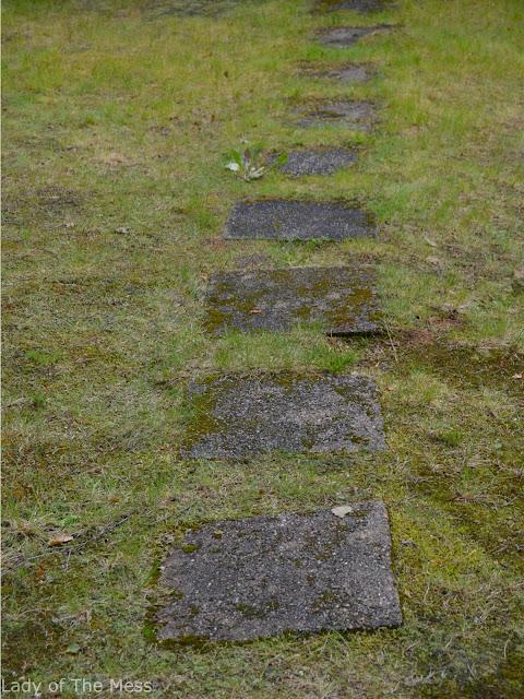 polku, path