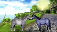 Moje Ukochane Konie