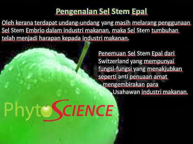 khasiat dan fungsi epal stem cell, epal sel stem