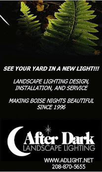 AfterDark Landscape Lighting