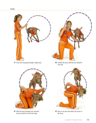 dog training books pdf free download