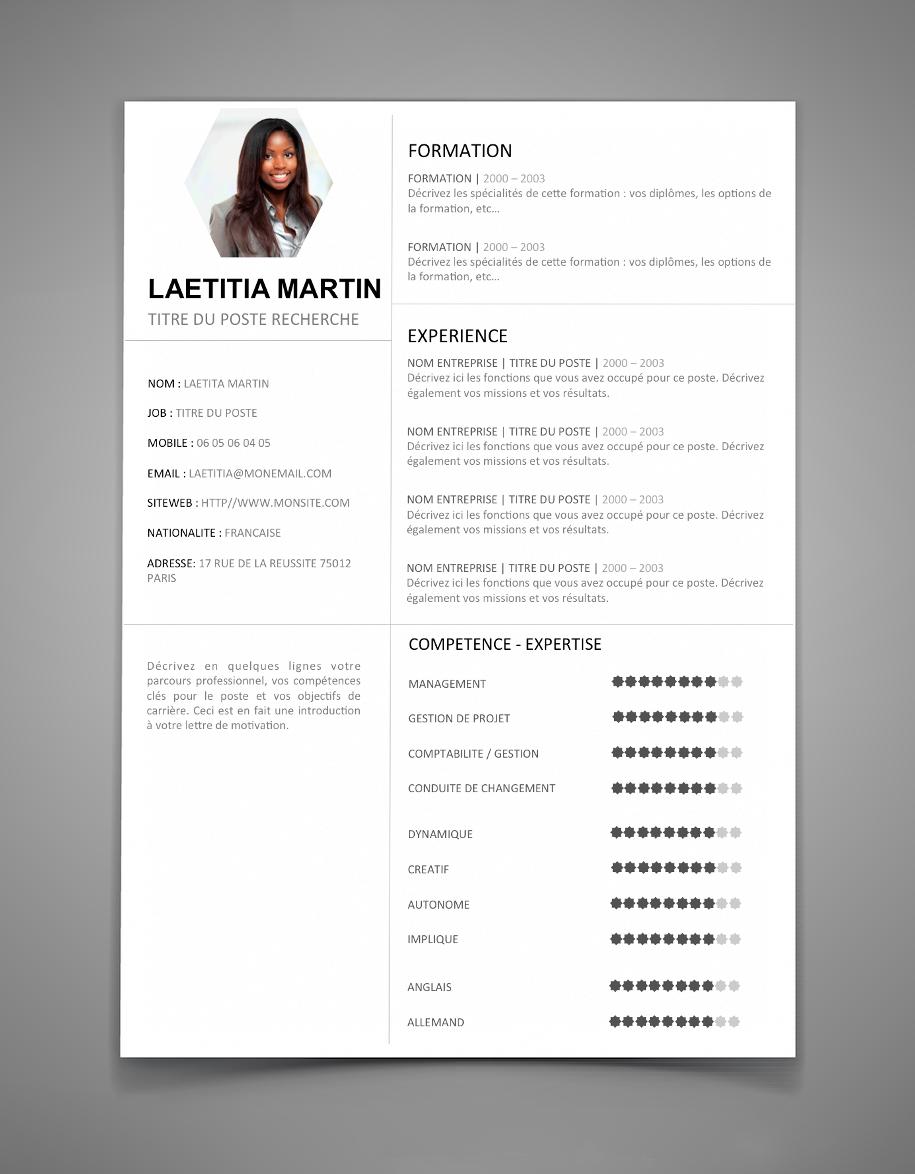 modele cv word gratuit moderne pdf