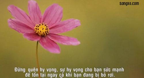 nhung-dieu-nen-tranh-trong-cuoc-song-3