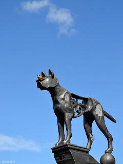 blue sky newtown dog