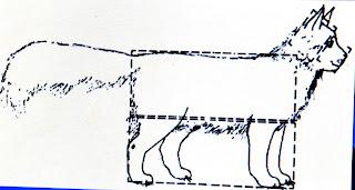 Cara Memilih Kucing Ras Maincoon Info Kucing Persia