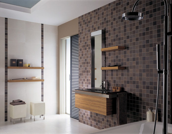 Diseno De Baños Ideas:Elegant Bathroom Design Ideas