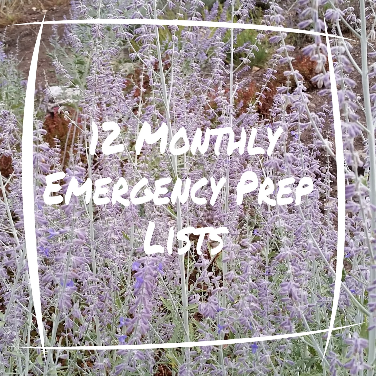 Prepared lds family 12 monthly emergency prep lists forumfinder Choice Image