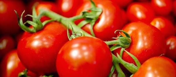 Khasiat Tomat Untuk Kecantikan Kulit