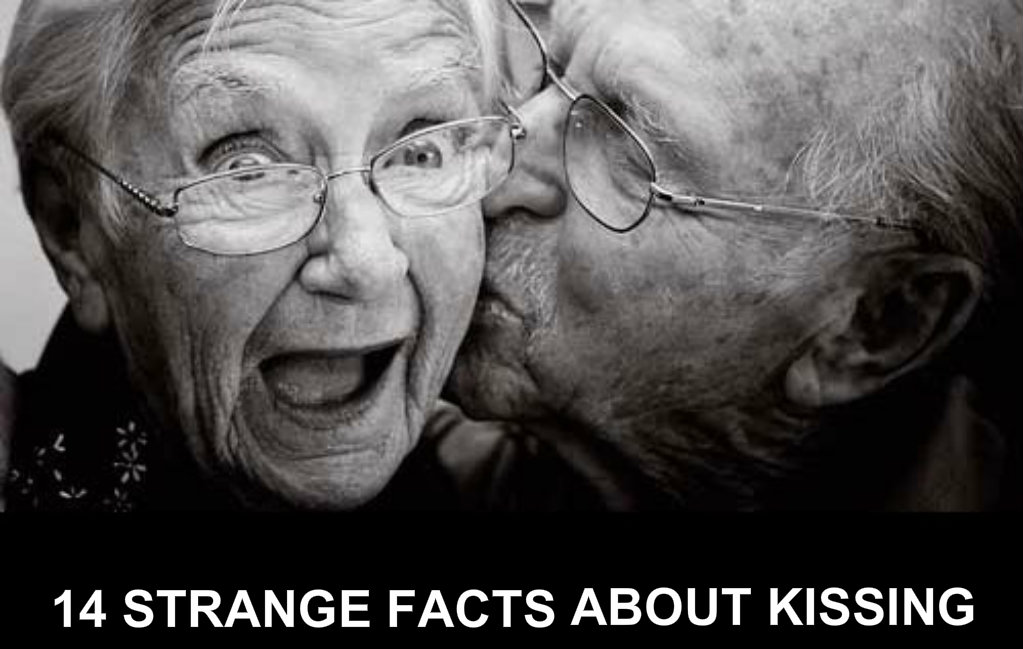 kiss fact