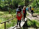 """Pasarel·la al Camí del Bosc Encantat. Autor: Francesc """"Caminaire"""""""