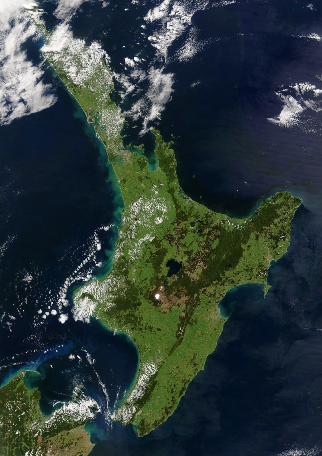 What To Do In New Zealand North Island October