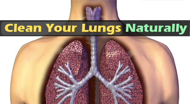 Natural Way To Clear Your Lungs Of Nicotine, Tar, And Nasty Tobacco Byproducts