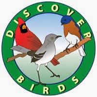 Discover Birds!