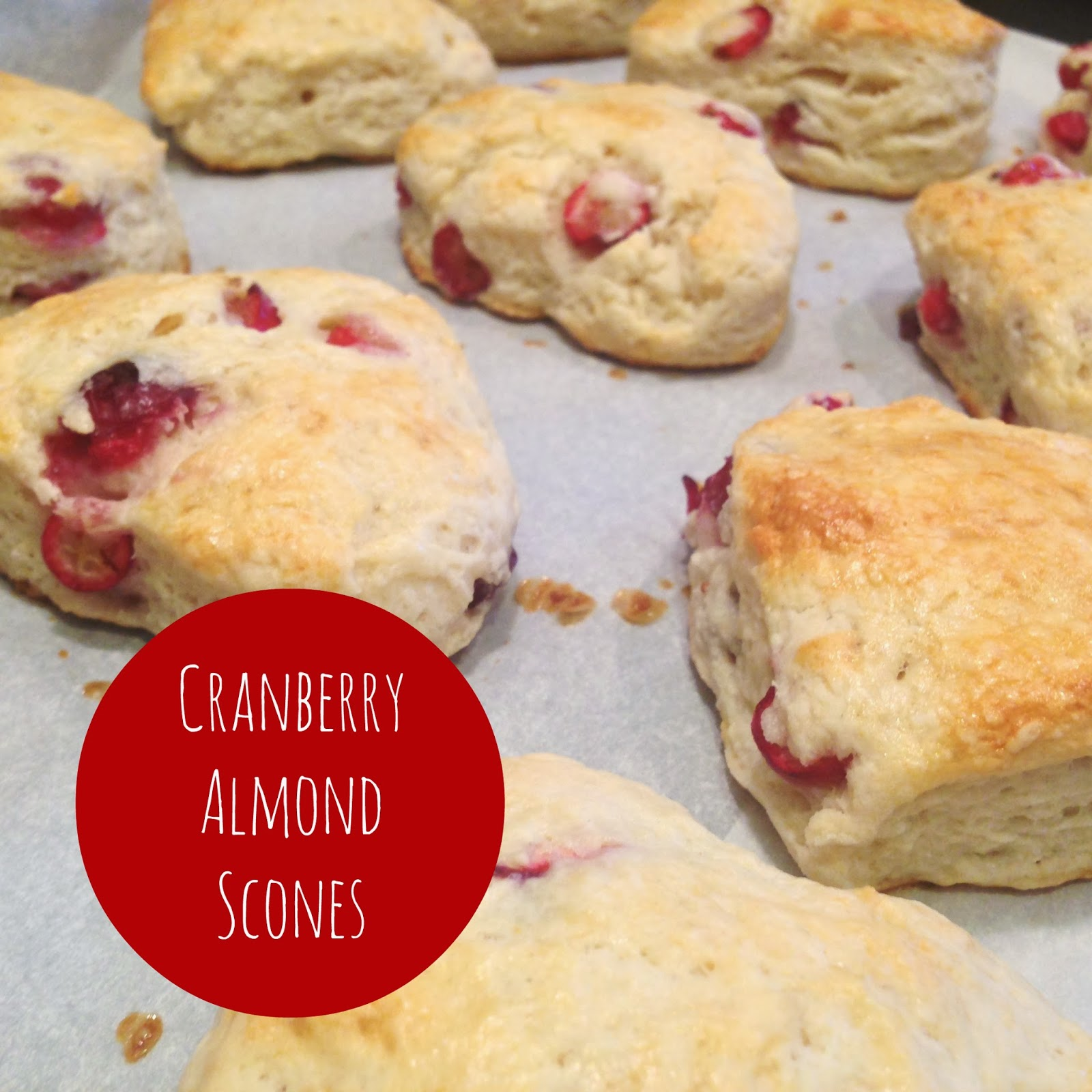 Little Bow Sweets: Turkey Day Sweets: Cranberry Almond Scones