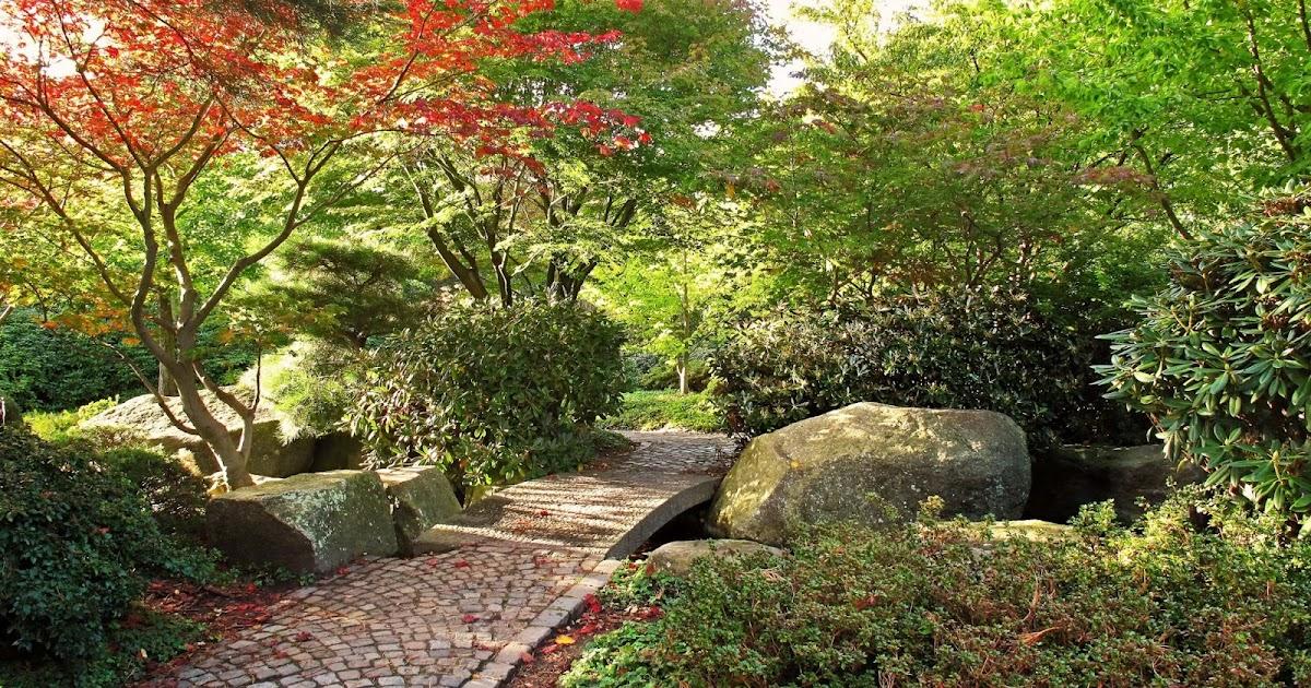 Arte y jardiner a como ubicar y plantar rboles - Jardines y plantas ...