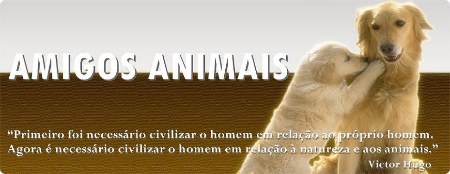 AMIGOS ANIMAIS