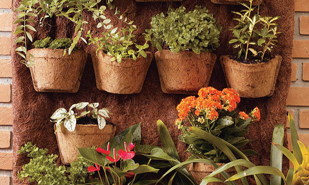 jardim vertical externo:Veja no mural abaixo algumas dicas de jardins verticais.