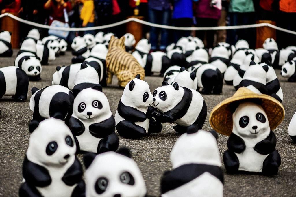 Pandas World Tour Takes Over Taipei
