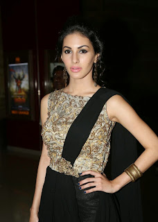 Amyra Dastur Picture Gallery in Long Dress at Anekudu Audio Launch ~ Bollywood and South Indian Cinema Actress Exclusive Picture Galleries