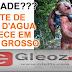 COISAS DE MT - Foto de filhote de Nego D'água, lenda no Estado, assusta ribeirinhos