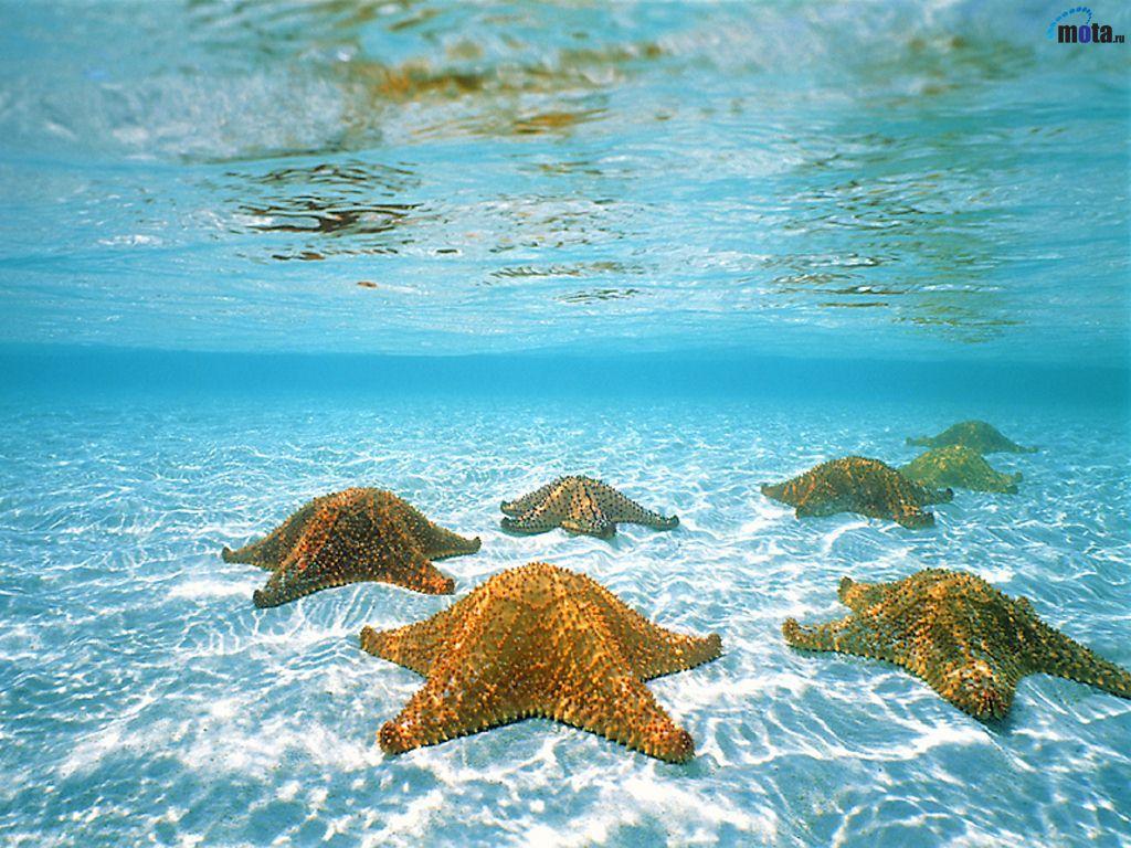 Fotos de paisajes del mar