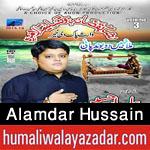 http://www.humaliwalayazadar.com/2015/10/alamdar-hussain-nohay-2016.html