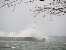 Waves on a windy winter day crash against breakwater in Petoskey, Michigan.
