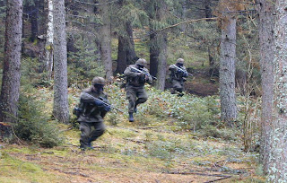 avusturya ordusu