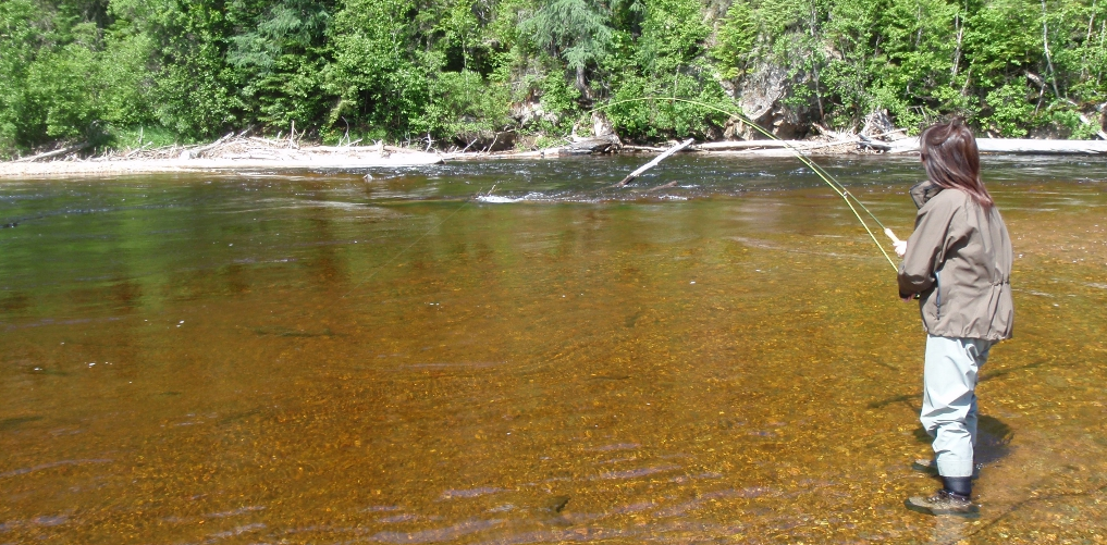 Virtual fly guides fly fishing report for ste marguerite for Fishing in quebec