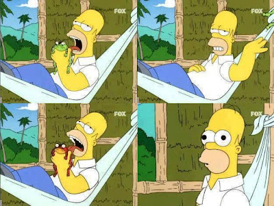 Homero drogado con sapo animal drogas alucionógenos