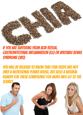 chia seeds and people with digestive problems