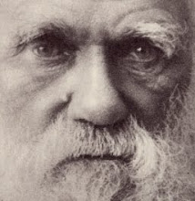 Le grandi menti. Charles Darwin, chi ha paura di lui?
