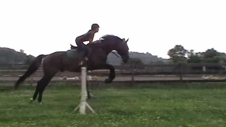 Miss Jean and Rolex after 3 months of body and mind rehabilitation!