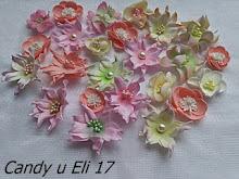 Candy u Eli 17
