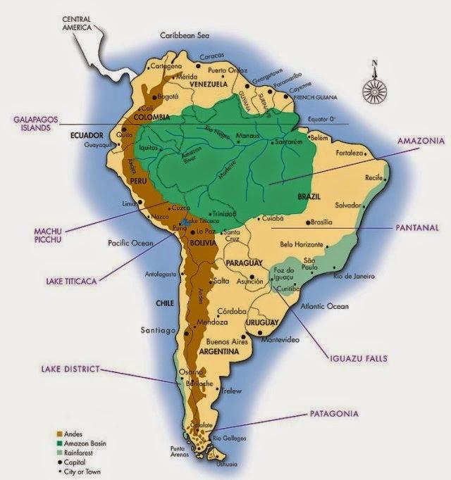 Tropical Rainforest: The Amazon Jungle