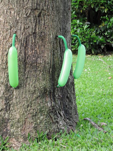 En el jardin salven a la catalpa - Como cuidar los arboles frutales ...
