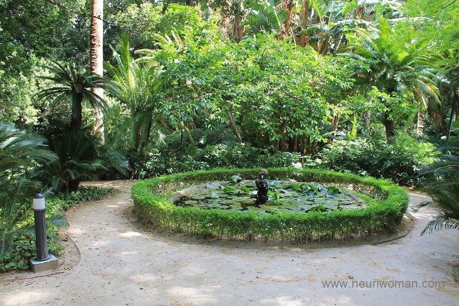 Jard n bot nico hist rico de m laga 7 for Jardin botanico de malaga